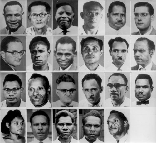 New Guinea Council Nieuw Guinea Raad